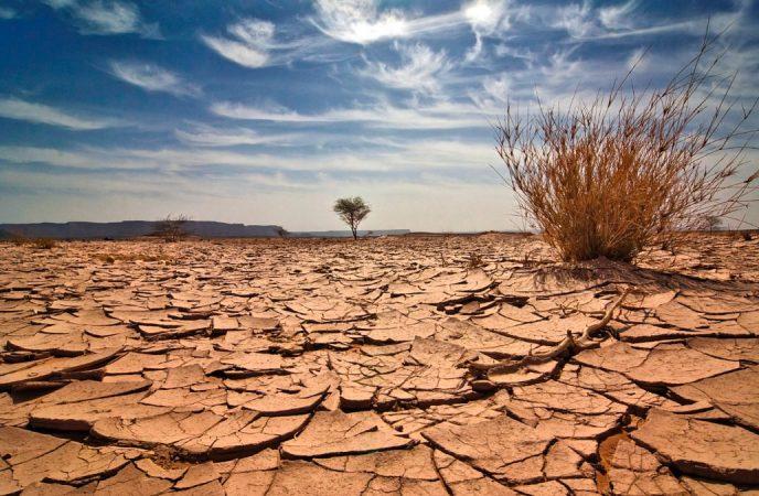 اعلام ورشکستگی آبی کشور