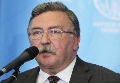 اولیانوف: روسیه مخالف نظریه گسترش برجام است/ نمیتوان زمانی برای پایان مذاکرات تعیین کرد
