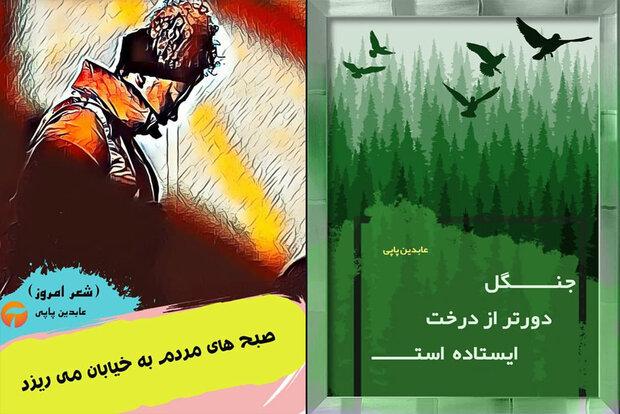 چاپ دو مجموعهشعر جدید از عابدین پاپی
